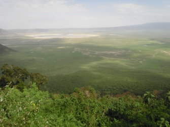 Lake Manyara is one of the many lakes that are getting drier and drier each year. Our guide attributed this to global warming