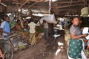 Mosquito River Market