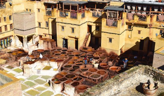 NSmith_fes-tannery