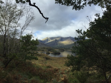 Killarney National Park in fall